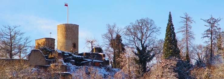 Die Burgruine Hohennagold im Januar 2016