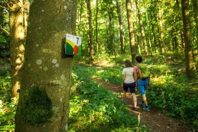 7-Berge-Weg