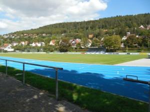 Reinhold-Fleckenstein-Stadion