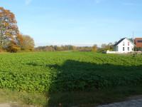 geplantes Baugebiet Gassenaecker Mindersbach - Bild 11; Quelle Stadt Nagold
