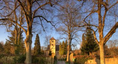 im Hintergrund Remigiuskirche, darum herum überall Herbstbäume ohne Blätter, von rechts scheint die Sonne hinein