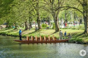 Stadtpark Kleb