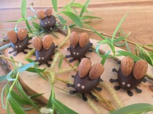Marzipan-Maikäfer der Liebenzeller Marzipan und Schokoladenmanufaktur