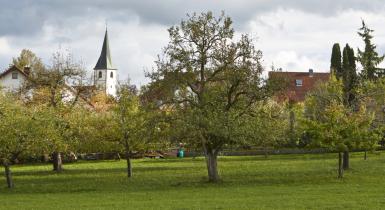 Ansicht Stadtteil Hochdorf