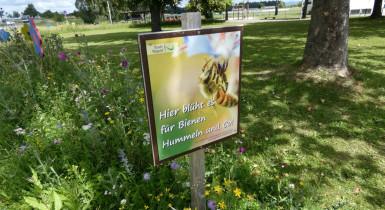 Schild Blühwiese