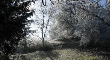 Eisberg im Winter