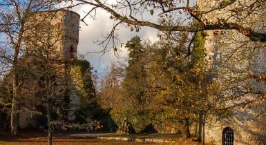 Burgruine Hohennagold in Herbststimmung