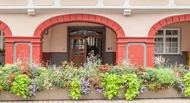 Die Eingangstüre des Rathauses unter den Arkaden. Im Vordergrund ist der Blumenswing im Sommerflor zu sehen