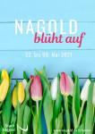 Bunte Tulpen in gelb, rosa und weiß vor einer blauen Holzwand