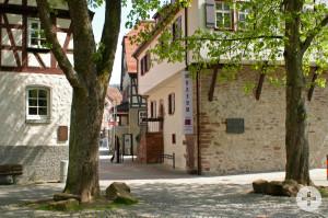 Museum im Steinhaus rechts und links die Kämmerei, man sieht nur den unteren Teil und jeweils davor ein Baum