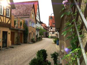Maiergasse wo links und rechts Häuser sind und an manchen Hauswänden Blätter hochwachsen