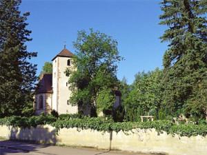 Remigiuskirche hinten, im Vordergrund Straße und eine kleine Mauer und in der Mitte, links und rechts ist jeweils ein Baum, blauer Himmel