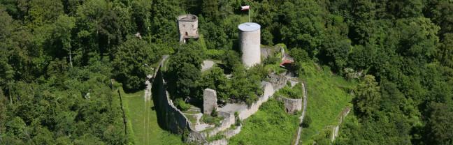 Luftaufname der Burgruine Hohennagold inmitten von grünen Bäumen